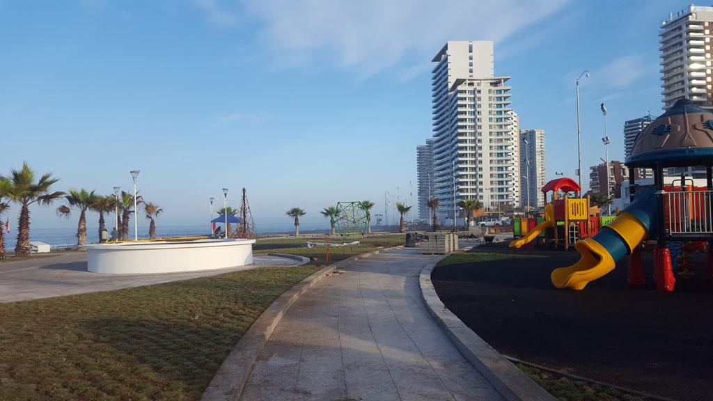 Palmeras Playa Brava iluminadas por Schreder