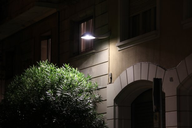 Luminaria Anima