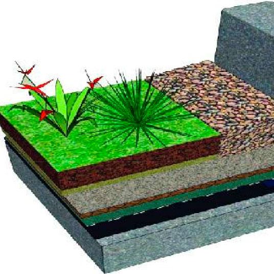Losa Plana Ajardinada Extensiva DGR/D en BIM