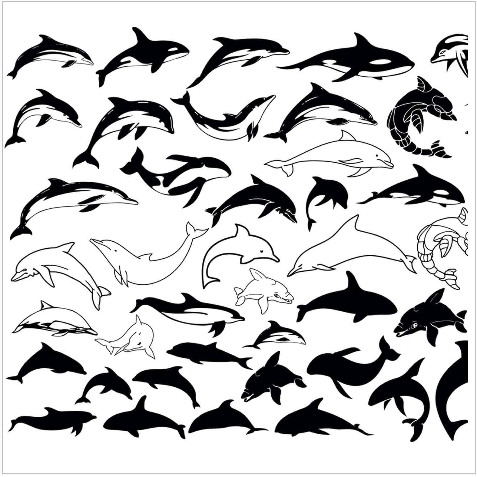 Bloques: Delfines / Vectorial