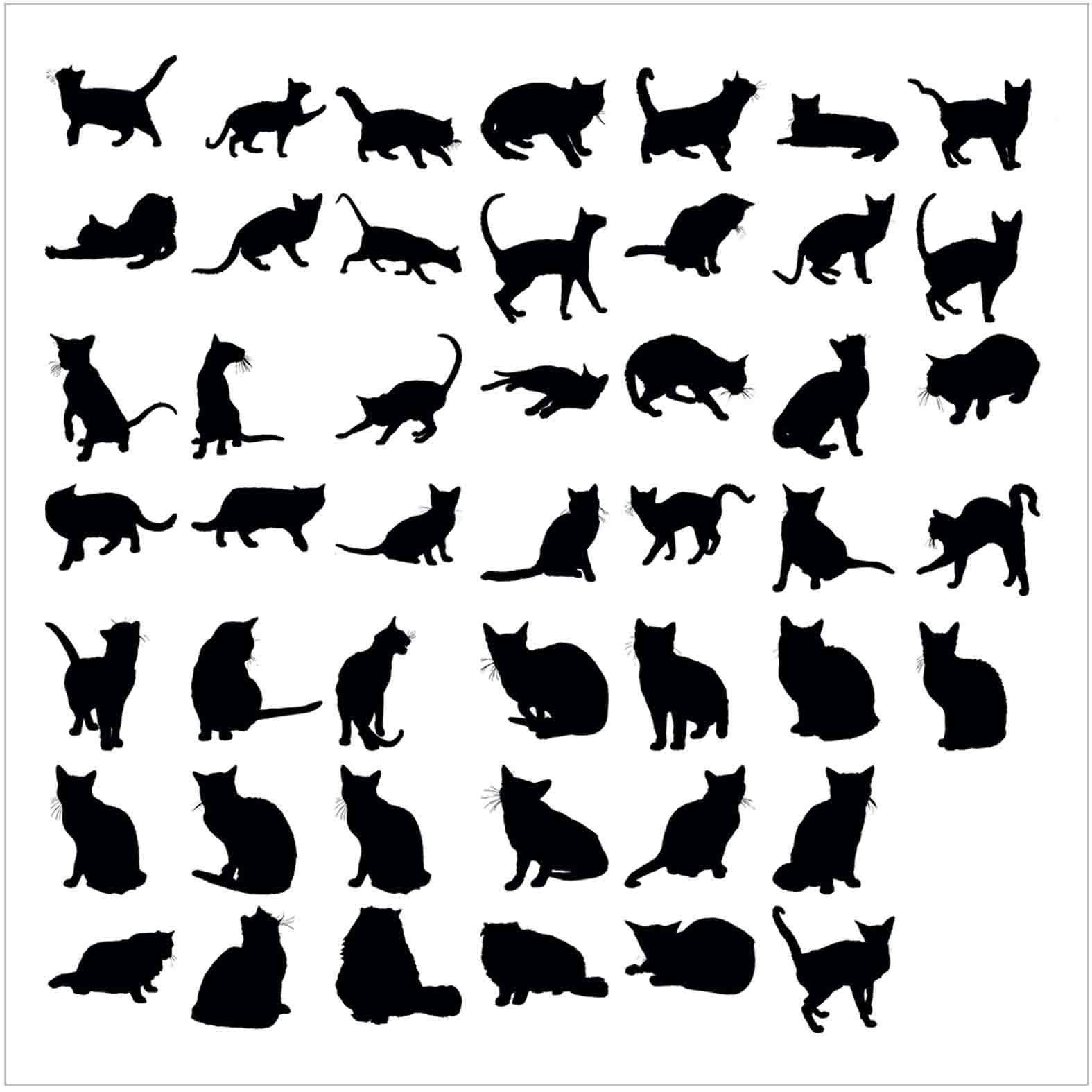 Bloques: Gatos / Vectorial