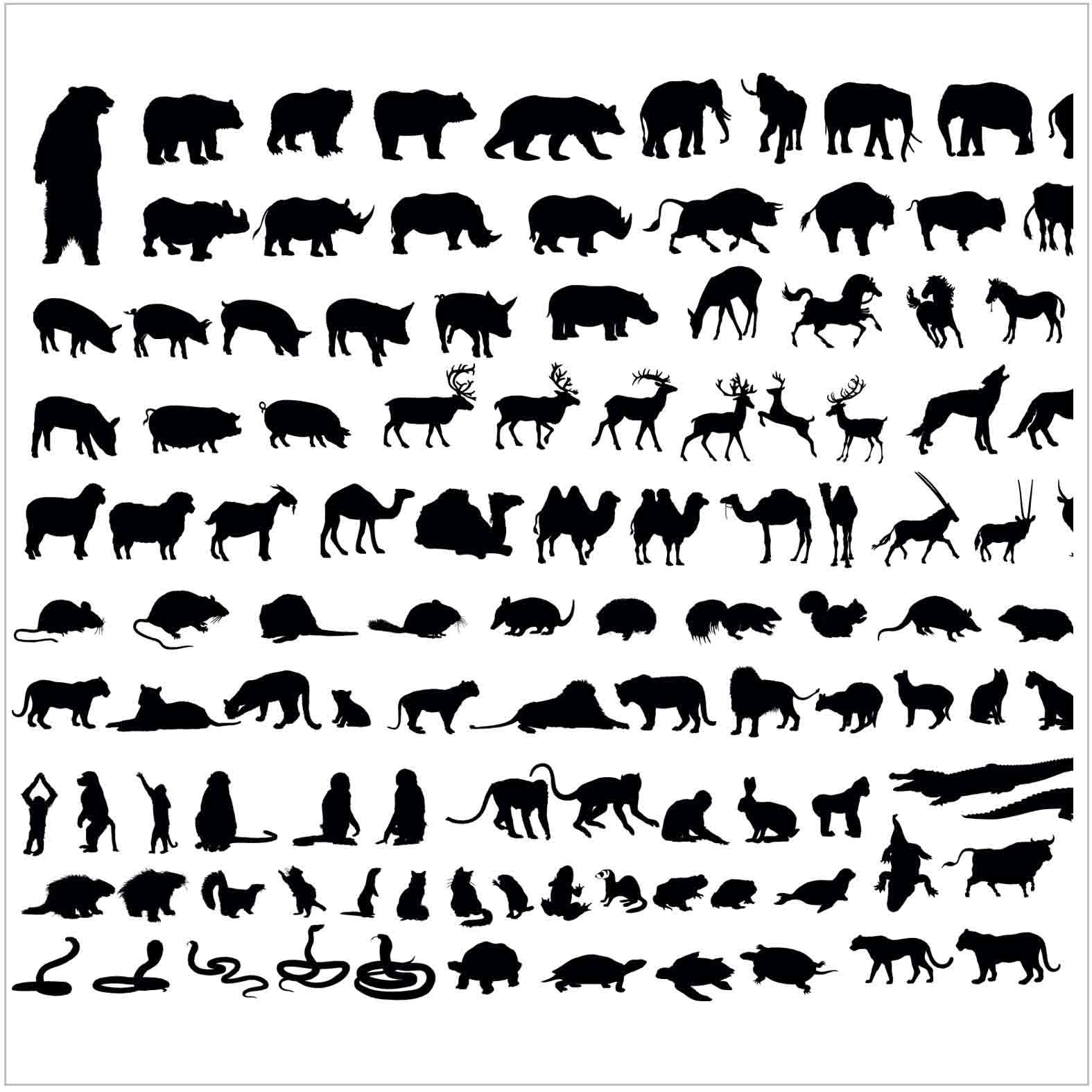 Bloques: Animales de Zoológico / Vectoriales