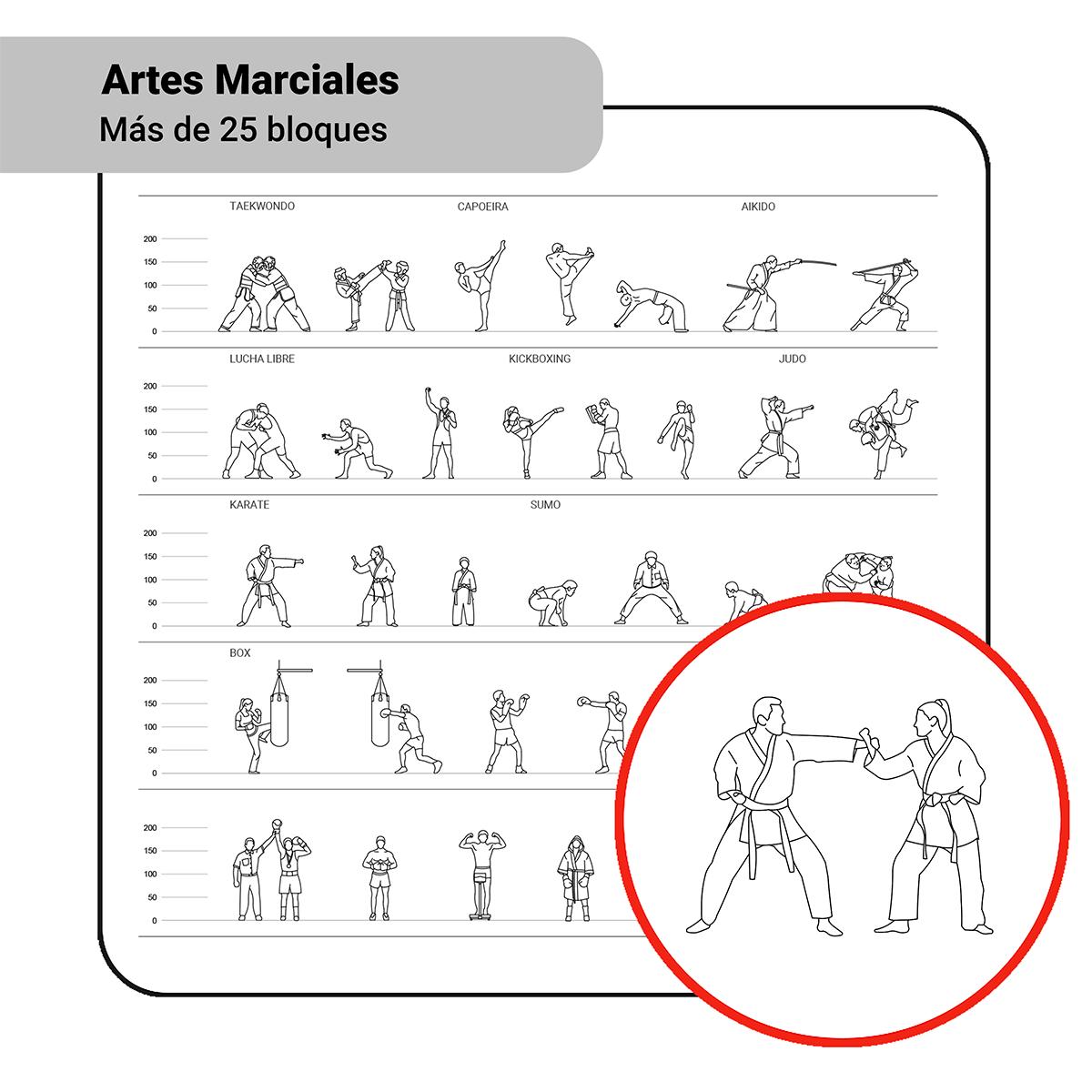 Bloques: Artes Marciales