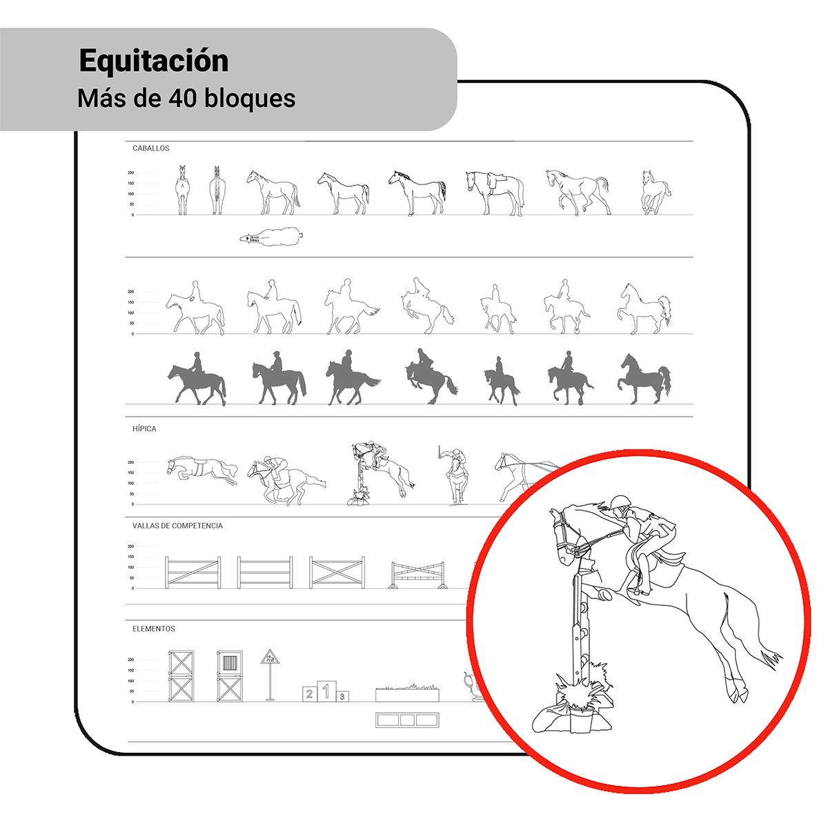 Bloques: Equitación