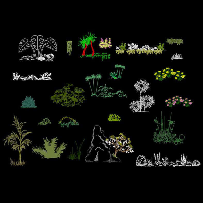 Bloques: Vegetación y flores